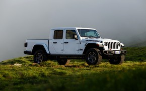 Картинка белый, трава, туман, внедорожник, дымка, пикап, Gladiator, 4x4, Jeep, Rubicon, 2019