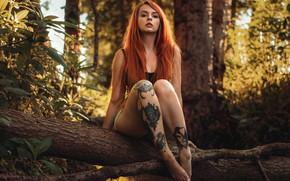 Картинка girl, Beautiful, nature, jeans, redhead, tattoos, sitting, Martin Kuhn, shors