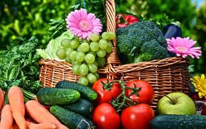 Обои зелень, цветы, корзина, яблоко, виноград, перец, фрукты, герберы, овощи, помидоры, морковь, капуста, боке, огурцы
