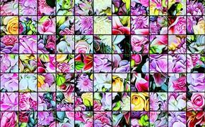 Картинка мозаика, текстура, витраж, яркие цвета, цветочное ассорти, стеклянная плитка, абстрактный рисунок
