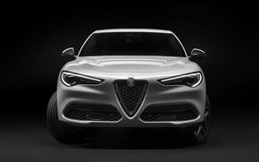 Картинка Alfa Romeo, вид спереди, кроссовер, Stelvio, 2019, Stelvio Ti