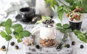 Картинка ягоды, завтрак, ежевика, веточки, баночка, йогурт, гранола