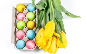 Картинка цветы, яйца, Пасха, тюльпаны, белый фон, крашенки, жёлтые тюльпаны