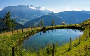 Картинка зелень, лето, горы, озеро, синева, столбы, корова, Альпы, пастбище, луг, ограждение, дымка, водоем, альпийская коровка