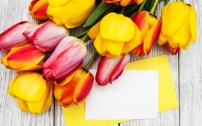 Картинка букет, желтые, Тюльпаны, красивые, Olena Rudo