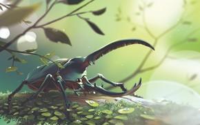 Картинка Природа, Капли, Рисунок, Жук, Арт, Beetle, Illustration, Concept Art, Environments, Lorenzo Lanfranconi, by Lorenzo Lanfranconi, …