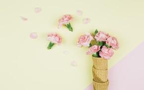 Картинка желтый, розовые, pink, гвоздики, вафельный рожок