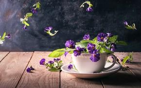 Картинка листья, свет, цветы, темный фон, стол, доски, фиолетовые, кружка, чашка, посуда, деревянный, натюрморт, цветочки, блюдце, …