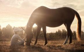 Картинка свет, конь, мальчик