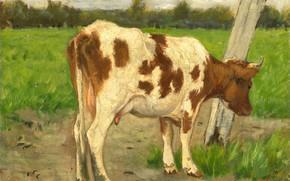 Картинка масло, картина, 1903, Корова, Джордж Ян Хендрик Поггенбек, George Poggenbeek