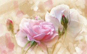 Картинка фон, нежность, роза