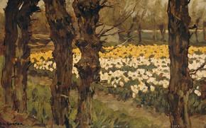 Картинка пейзаж, масло, картина, 1937, Антон Л. Костер, Цветочные Поля, Anton L. Koster