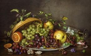 Картинка яблоки, апельсин, тарелка, виноград, ракушки, натюрморт