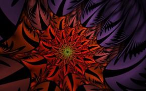 Обои цветок, красный, острые края