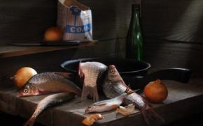 Картинка рыба, лук, соль, плотва, карась