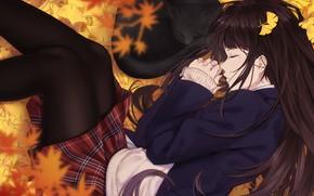 Картинка осень, кошка, девушка, листва, спят