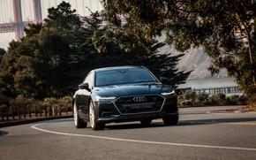 Картинка Audi, растительность, 2019, A7 Sportback