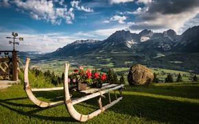 Картинка пейзаж, цветы, горы, природа, камень, Австрия, Альпы, сани, луга, декорация, флюгер, Тироль