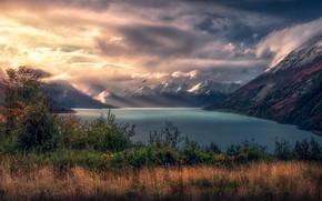 Картинка осень, трава, свет, горы, туман, озеро, птица, вершины, дымка, кусты, водоем