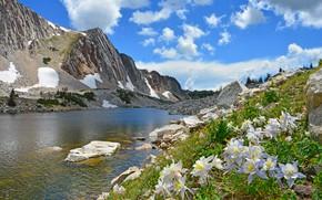 Картинка зелень, небо, облака, снег, цветы, горы, озеро, река, синева, камни, скалы, голубое, берег, склоны, вершины, …