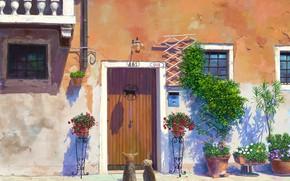 Картинка растения, дверь, фонарь, вывеска, ожидание, возле дома, летний день, два щенка, цветы в горшках, городская …