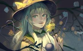 Картинка девушка, шляпа, Тоухоу
