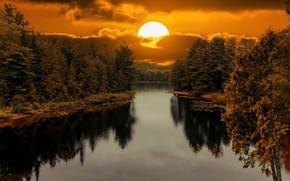 Картинка лес, солнце, закат, отражение, берег, водоем
