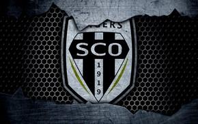 Картинка wallpaper, sport, logo, football, Angers