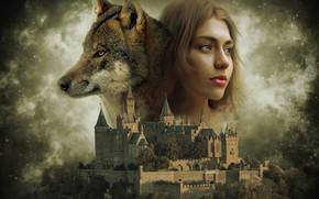 Картинка небо, замок, волк, девушка art