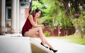 Картинка взгляд, девушка, азиатка, милашка, красивые ножки