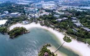 Картинка деревья, мост, город, побережье, здания, высота, дома, Сингапур, Palawan Beach