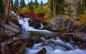 Картинка осень, лес, пейзаж, природа, река, камни, водопад, Калифорния, США