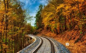 Картинка осень, лес, железная дорога