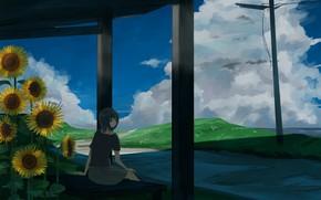 Картинка лето, девушка, подсолнухи, скамейка, dayflower