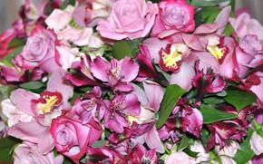 Картинка цветы, букет, в розовых тонах