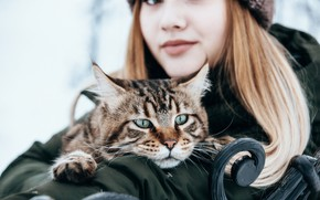 Картинка кошка, кот, девушка, настроение, мордочка, Анастасия Голубева