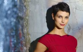 Картинка взгляд, поза, Morena Baccarin, макияж, актриса, look, pose, actress, makeup, Морена Баккарин