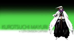 Картинка Bleach, Блич, учёный