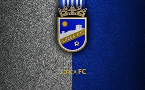 Картинка wallpaper, sport, logo, football, La Liga, Lorca