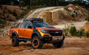 Картинка растительность, Chevrolet, пикап, 4x4, Colorado, Z71, карьер, 2016, Xtreme Concept