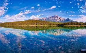 Обои осень, лес, облака, горы, озеро, отражение, синева, камни, вершины, вид, дно, Канада, панорама, Альберта, водоем, ...