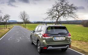 Картинка дорога, Subaru, кроссовер, Forester, 2019