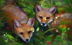 Картинка природа, лисята, by Meorow