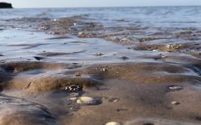 Картинка море, берег, азов