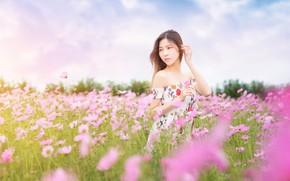 Картинка поле, лето, небо, взгляд, девушка, цветы, поза, платье, розовые, прогулка, азиатка, сарафан, юная, космеи