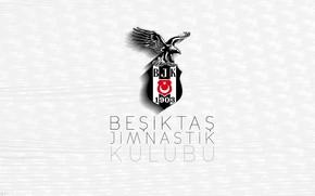 Картинка emblem, football, turkey, beşiktaş