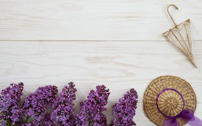 Картинка цветы, wood, flowers, сирень, spring, lilac
