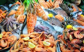 Картинка лимон, рыба, омар, кальмар, креветки, морепродукты