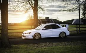 Картинка Subaru, Impreza, WRX, STI, Sunset, White
