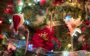 Картинка украшения, цветы, ветки, ленты, праздник, игрушки, новый год, рождество, ёлка, лампочки